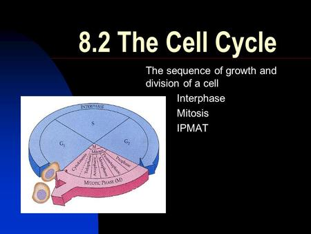 8.2 The Cell Cycle The sequence of growth and division of a cell Interphase Mitosis IPMAT.