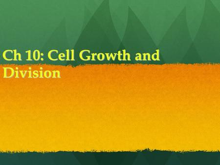 Ch 10: Cell Growth and Division. Cells Do not continue to grow bigger, instead they produce more cells Do not continue to grow bigger, instead they produce.