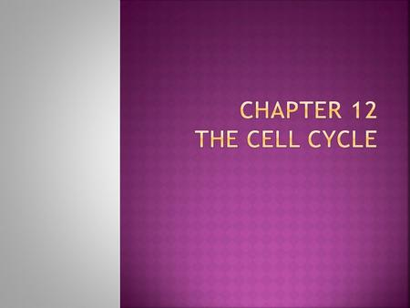 Chapter 12 The Cell Cycle.