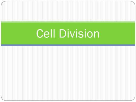 Cell Division.
