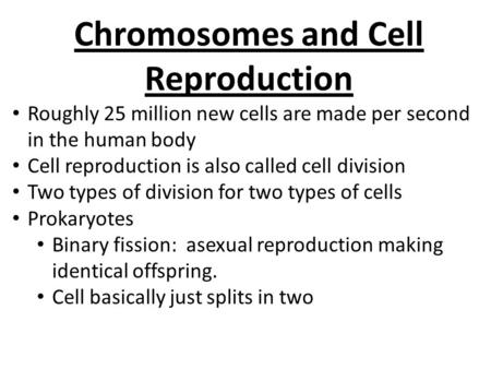 Chromosomes and Cell Reproduction Roughly 25 million new cells are made per second in the human body Cell reproduction is also called cell division Two.