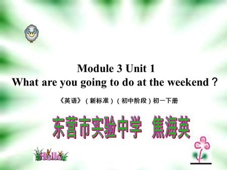 Module 3 Unit 1 What are you going to do at the weekend ? 《英语》(新标准)(初中阶段)初一下册.