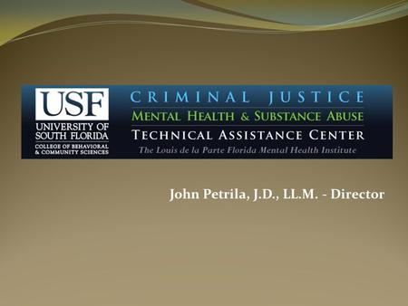 John Petrila, J.D., LL.M. - Director. When: Florida Legislature created the Florida Criminal Justice Mental Health & Substance Abuse Technical Assistance.