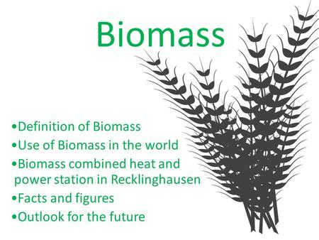 Biomass Definition of Biomass Use of Biomass in the world Biomass combined heat and power station in Recklinghausen Facts and figures Outlook for the future.