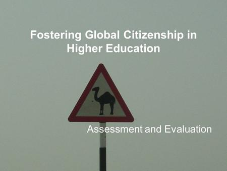 Fostering Global Citizenship in Higher Education Assessment and Evaluation.