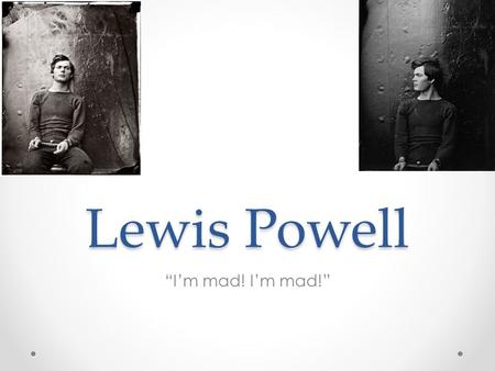 "Lewis Powell ""I'm mad! I'm mad!"". Background Grew up in Stewart County, Georgia o Youngest of 8 children o Homeschooled by father o Enjoyed working with."