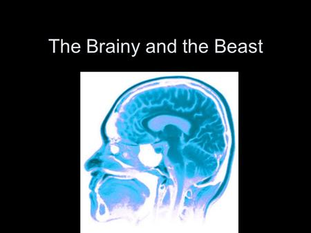 The Brainy and the Beast. How do we Study the Brain? Phineas Gage Tamping iron through the brain.