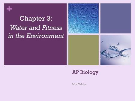 + AP Biology Mrs. Valdes Chapter 3: Water and Fitness in the Environment.