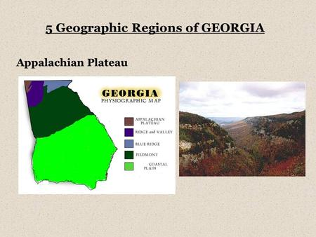 Appalachian Plateau 5 Geographic Regions of GEORGIA.
