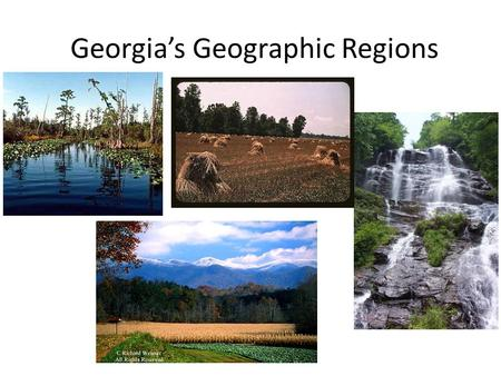 Georgia's Geographic Regions. What makes a region? A region is the basic unit of study in geography A region can be defined by common characteristics.
