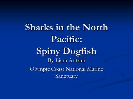 Sharks in the North Pacific: Spiny Dogfish By Liam Antrim Olympic Coast National Marine Sanctuary.