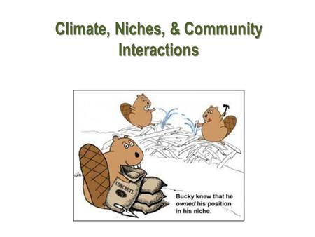 Climate, Niches, & Community Interactions. Weather vs. Climate Weather Climate Weather is the day to day conditions of the earth's atmosphere. Climate.