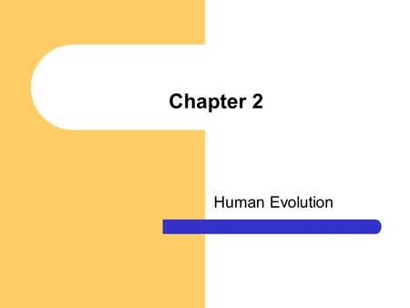 Chapter 2 Human Evolution. Chapter Questions What is Darwin's theory of evolution by natural selection and how well accepted is it? What characteristics.