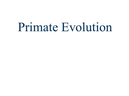 Primate Evolution. Today's Objectives: investigate and understand how primates have changed through time, including: –Examining fossil records –Recognizing.