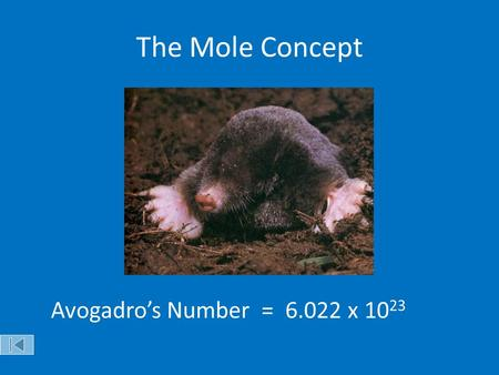 The Mole Concept Avogadro's Number = x 1023 Objectives:
