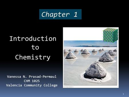 Chapter 1 Introduction to Chemistry Vanessa N. Prasad-Permaul CHM 1025