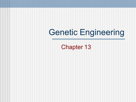 Genetic Engineering Chapter 13 Selective Breeding Choosing the BEST traits for breeding. Most domesticated animals are products of SB. Also known as: