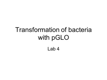Transformation of bacteria with pGLO Lab 4. pGLO gene Bioluminescent jelly fish – Aequorea victoria – GFP causes fish to glow in dark Transformed E.coli.
