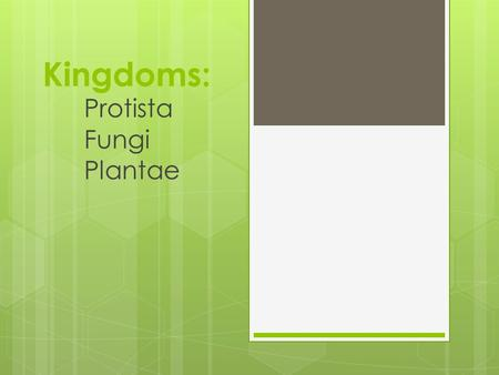Kingdoms: Protista Fungi Plantae. Kingdom Protista  Unicellular eukaryotes  Many are both plant- and animal- like  Examples: unicellular algae and.
