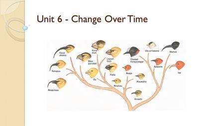 Unit 6 - Change Over Time.
