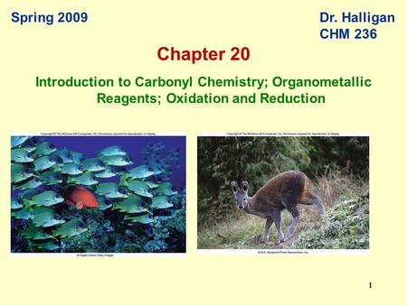111111 Spring 2009Dr. Halligan CHM 236 Introduction to Carbonyl Chemistry; Organometallic Reagents; Oxidation and Reduction Chapter 20.
