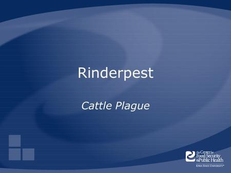 Rinderpest Cattle Plague. Center for Food Security and Public Health Iowa State University 2006 Overview Cause Economic impact Distribution Transmission.