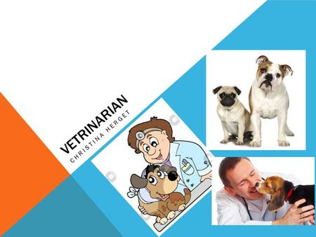 VETRINARIAN CHRISTINA HERGET. WHAT IS A VETRINARIAN… Veterinarians treat sick and injured animals, provide preventive medical services, and give advice.