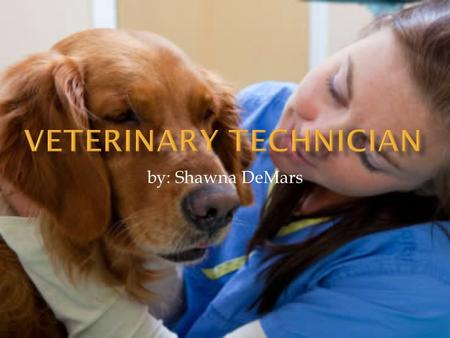 By: Shawna DeMars.  Working with animals  Gain trust from many people  Being a part of something you love.