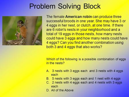 Problem Solving Block The female American robin can produce three successful broods in one year. She may have 3 or 4 eggs in her nest, or clutch, at one.