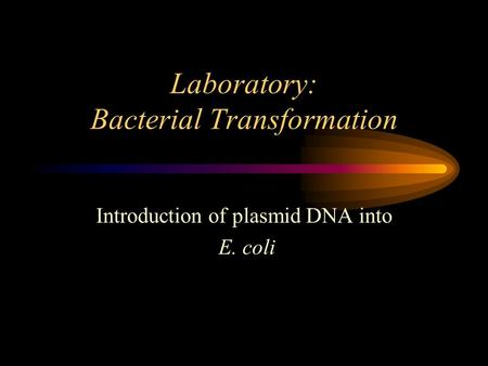 Laboratory: Bacterial Transformation Introduction of plasmid DNA into E. coli.