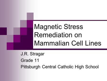 Magnetic Stress Remediation on Mammalian Cell Lines J.R. Stragar Grade 11 Pittsburgh Central Catholic High School.