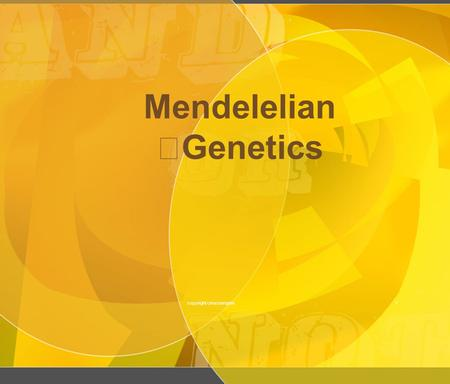 1 Mendelelian Genetics copyright cmassengale. 2 Gregor Mendel ( 1822-1884) Responsible for the Laws governing Inheritance of Traits copyright cmassengale.