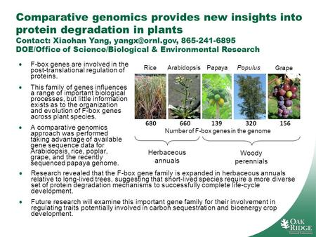 Comparative genomics provides new insights into protein degradation in plants Contact: Xiaohan Yang, 865-241-6895 DOE/Office of Science/Biological.