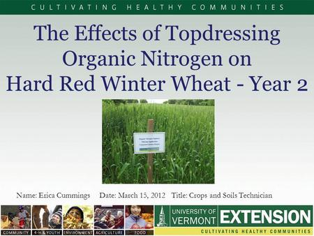The Effects of Topdressing Organic Nitrogen on Hard Red Winter Wheat - Year 2 Name: Erica Cummings Date: March 15, 2012 Title: Crops and Soils Technician.