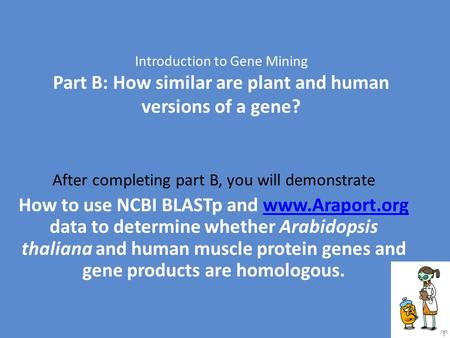 Introduction to Gene Mining Part B: How similar are plant and human versions of a gene? After completing part B, you will demonstrate How to use NCBI BLASTp.