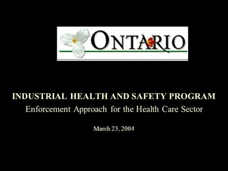 INDUSTRIAL HEALTH AND SAFETY PROGRAM Enforcement Approach for the Health Care Sector March 23, 2004.