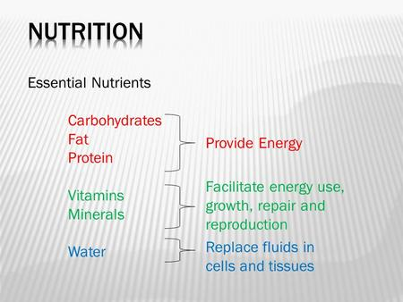 NUTRITION Essential Nutrients Carbohydrates Fat Protein Vitamins