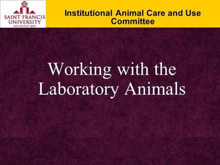 Working with the Laboratory Animals Institutional Animal Care and Use Committee.