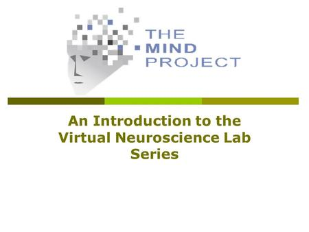 An Introduction to the Virtual Neuroscience Lab Series.