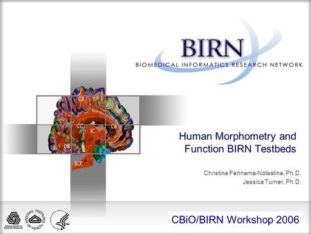All Hands Meeting 2005 Human Morphometry and Function BIRN Testbeds Christine Fennema-Notestine, Ph.D. Jessica Turner, Ph.D. CBiO/BIRN Workshop 2006.