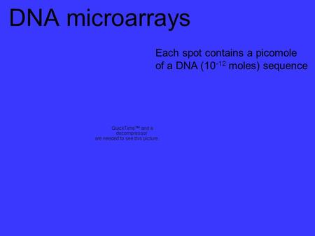 DNA microarrays Each spot contains a picomole of a DNA (10 -12 moles) sequence.