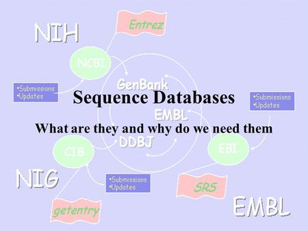 Sequence Databases What are they and why do we need them.