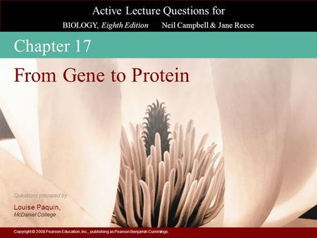 From Gene to Protein Chapter 17
