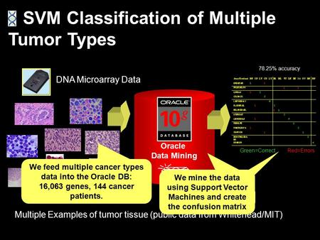 Multiple Examples of tumor tissue (public data from Whitehead/MIT) SVM Classification of Multiple Tumor Types DNA Microarray Data Oracle Data Mining 78.25%