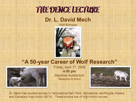 Dr. Mech has studied wolves in Yellowstone Nat'l Park, Minnesota, Isle Royale, Alaska and Canada's High Arctic (80°N). These photos are of High Arctic.