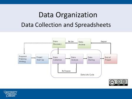 Data Organization Data Collection and Spreadsheets.