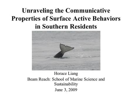 Unraveling the Communicative Properties of Surface Active Behaviors in Southern Residents Horace Liang Beam Reach: School of Marine Science and Sustainability.