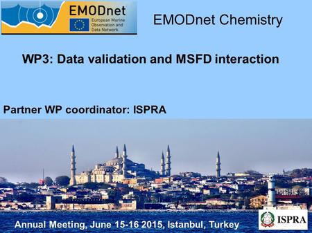 Annual Meeting, June 15-16 2015, Istanbul, Turkey WP3: Data validation and MSFD interaction EMODnet Chemistry Partner WP coordinator: ISPRA.