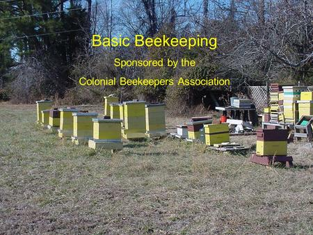 Basic Beekeeping Sponsored by the Colonial Beekeepers Association.