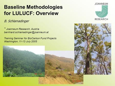 Baseline Methodologies for LULUCF: Overview B. Schlamadinger * Joanneum Research, Austria Training Seminar for BioCarbon.